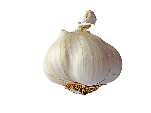 The History of Garlic ⋆ Unlimited Recipes