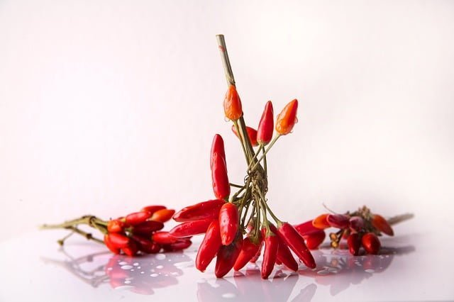best-chili-spices