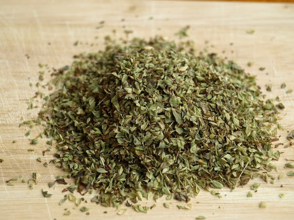 best oregano powder